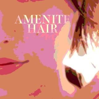 AMENITE HAIRのロゴ画像