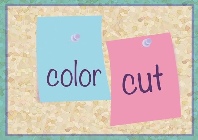 カラー+カットのメイン画像